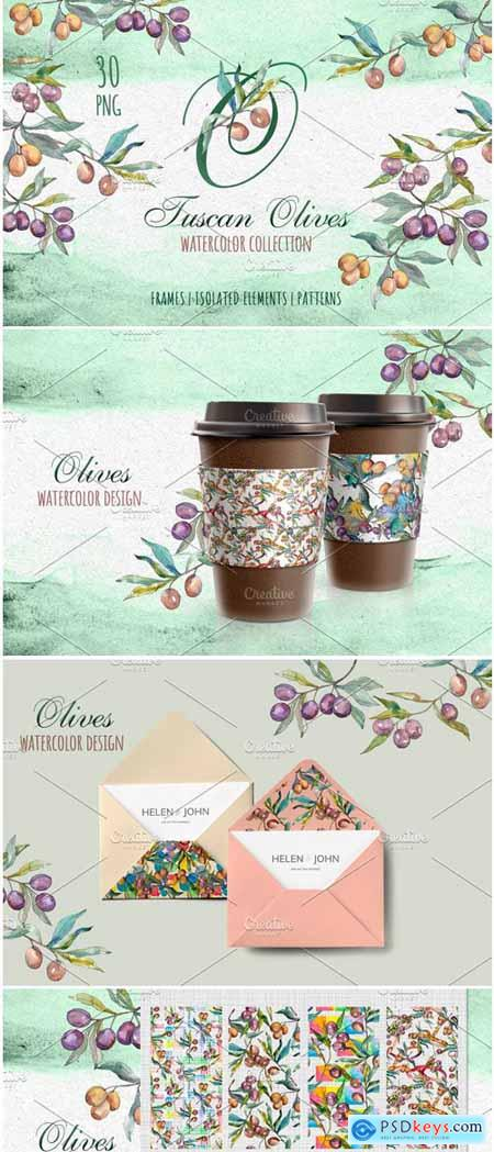 Creativemarket Tuscan Olives Green Watercolor PNG 3740351