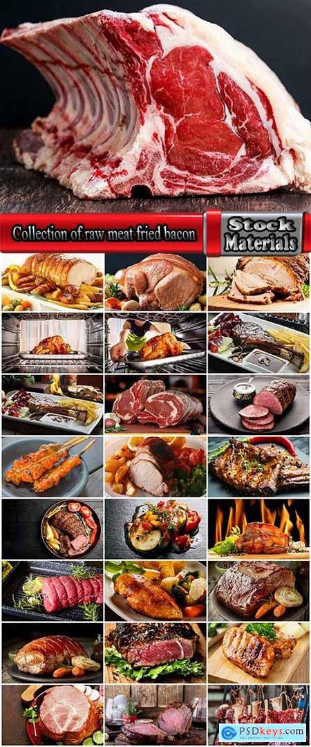 Collection of raw meat fried bacon smoked sturgeon delicacy dish 25 HQ Jpeg