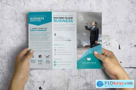 Trifold Brochure 3574613