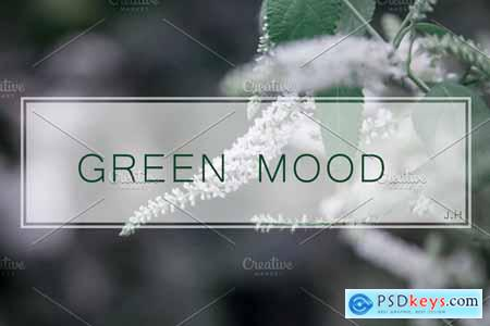 GREENMOOD Inspired Lightroom Preset