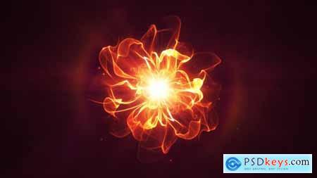 Videohive Golden Flower Logo Reveal