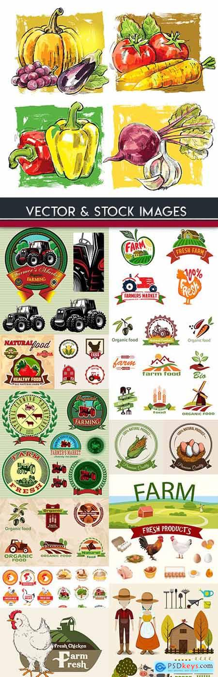 Farm agriculture fresh products label collection