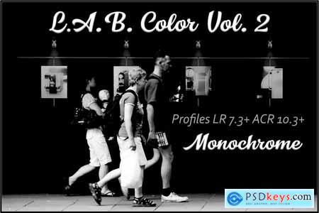 LAB Color V. 2 - Monochrome profiles 3749995
