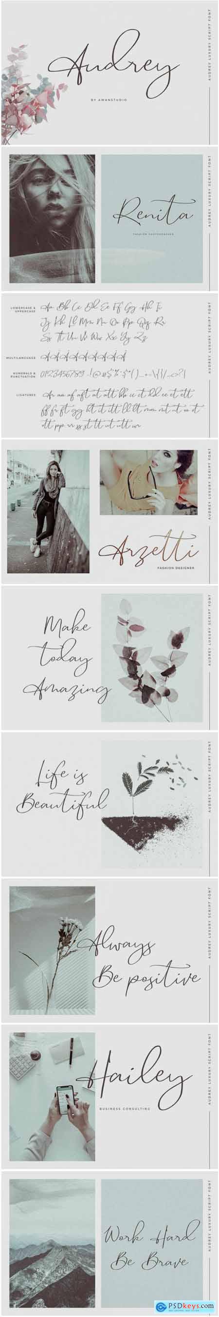 Creativemarket Audrey - Luxury Script Font 3402822