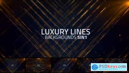Videohive Luxury Lines Abstract Loop Backgrounds 5in1