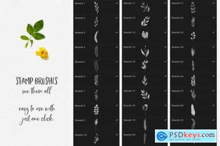 244 Watercolor Brushes For Procreate 3851051 » Free Download