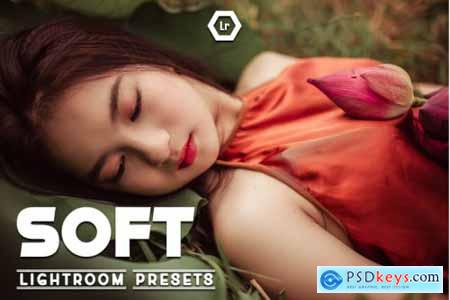 Soft Lightroom Preset Vol.4