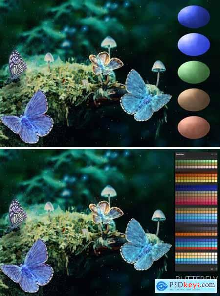 Butterfly Swatches 1508670