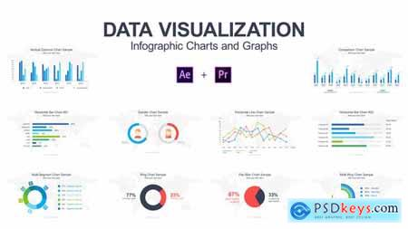 Videohive Data Visualization Infographic Charts and Graphs