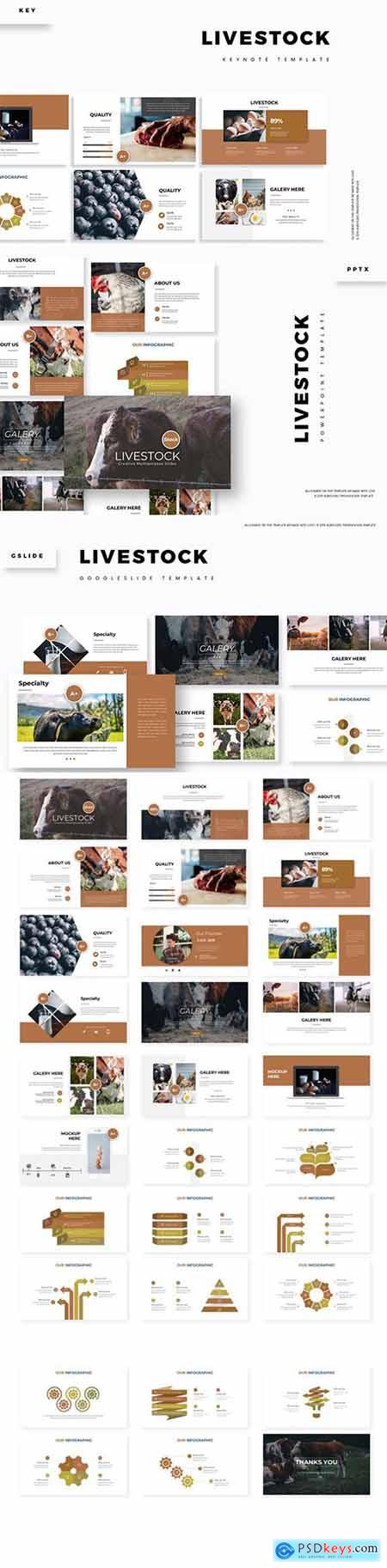 Livestock - Powerpoint, Keynote and Google Slides Templates