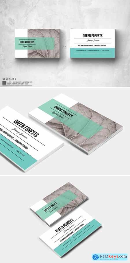 Eco App Business Card Design
