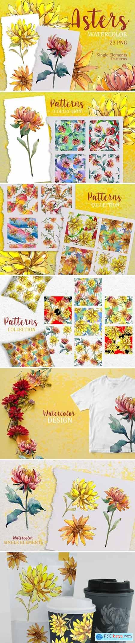 Yellow Watercolor Asters PNG Set 1598562