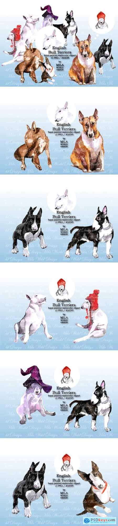 Watercolor English Bull Terriers Clip Art 1598521