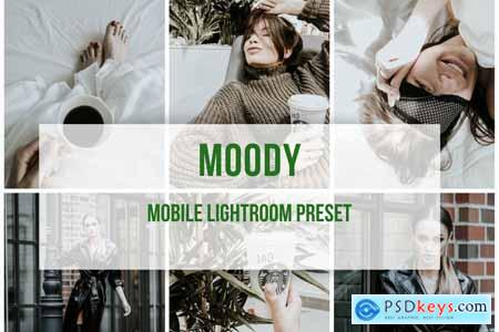 Lightroom Mobile Preset Moody 3908487 » Free Download