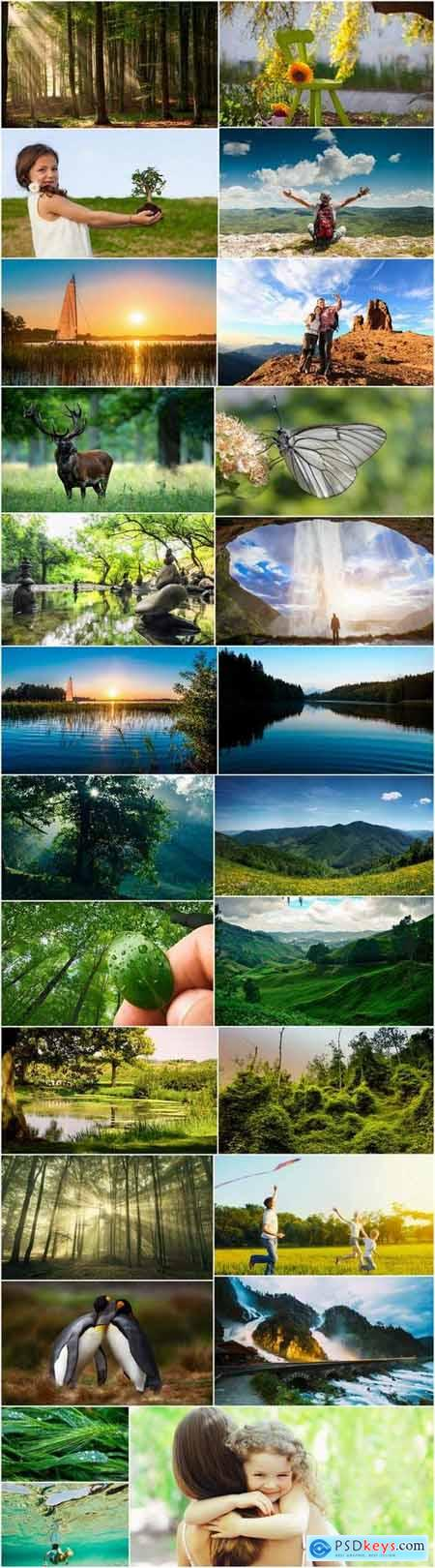 Nature landscape lake river animal 25 HQ Jpeg