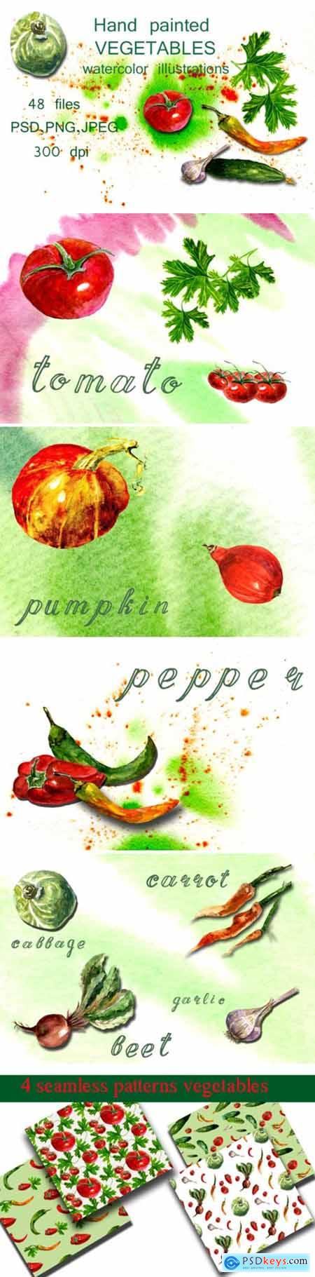 Watercolor Illustrations Vegetables 1657912