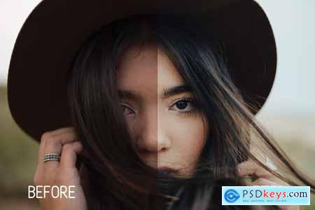 Perfect Tones Lightroom Presets 3979543