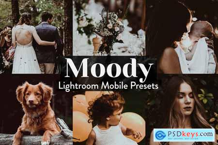 Moody Lightroom Presets Mobile 4015357
