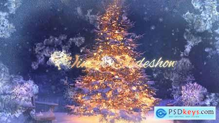 VideoHive Winter Holiday 14010013