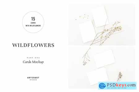 Wildflowers Cards Mockup 4046266