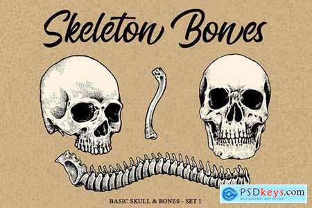 Skeleton handrawn 1
