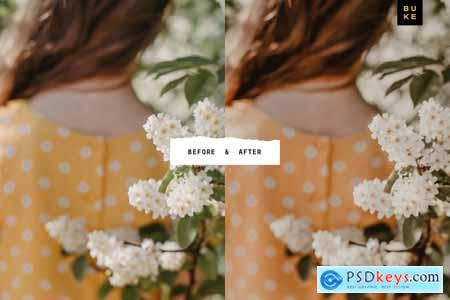 5 Tan Lightroom Presets Bundle 4054585