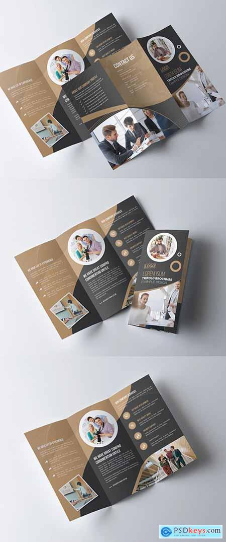 Tan and Dark Gray Business Brochure Layout 277926670