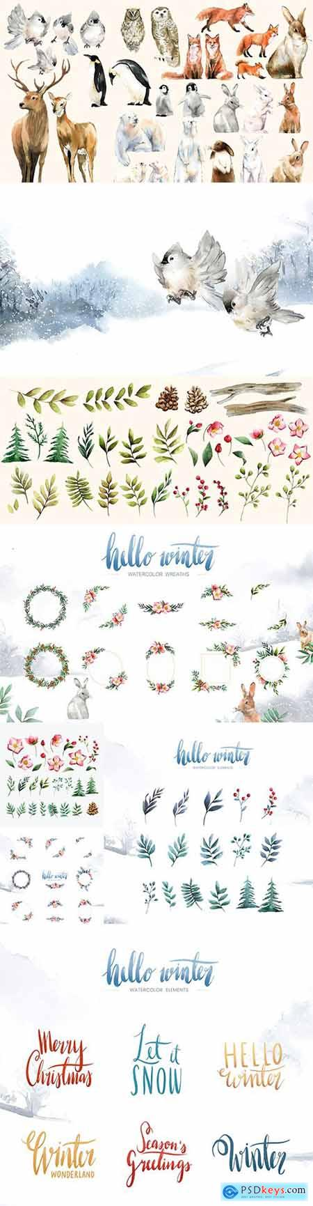 Set of Winter Hand-Drawn Wildlife Watercolor Bloom and Elements Vector