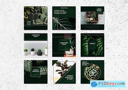 Tree Banner Template Vectors Collection 845699