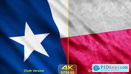 Videohive Texas State Flags 24628343