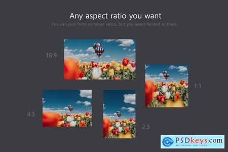 Ratio Switch - Format Change Kit 4137948