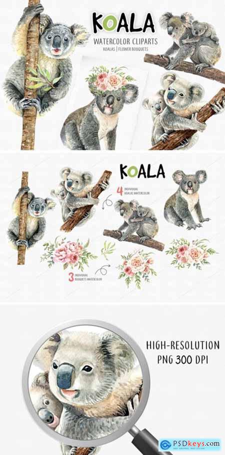 Koala Bear Animals Watercolor Cliparts 1816757