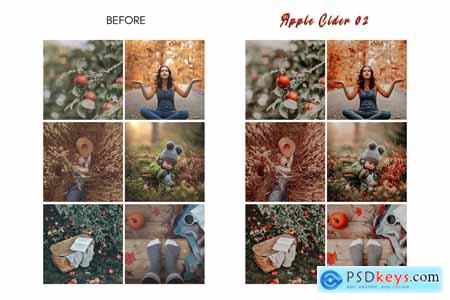Rich Mood APPLE CIDER Mobile Presets 4160732
