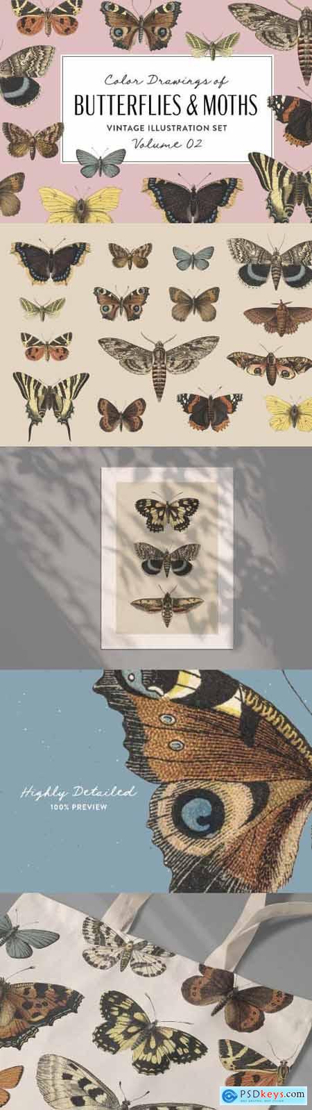 Butterflies & Moths Vintage Graphics Vol. 2