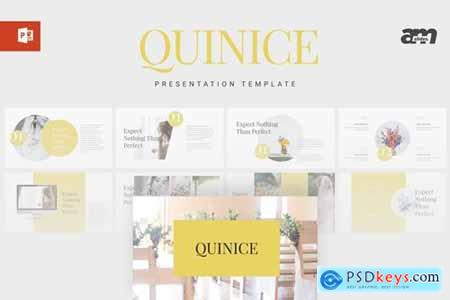 Quinice Powerpoint, Keynote and Google Slides Templates