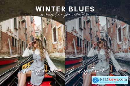 Winter Blues Mobile Presets 4079269