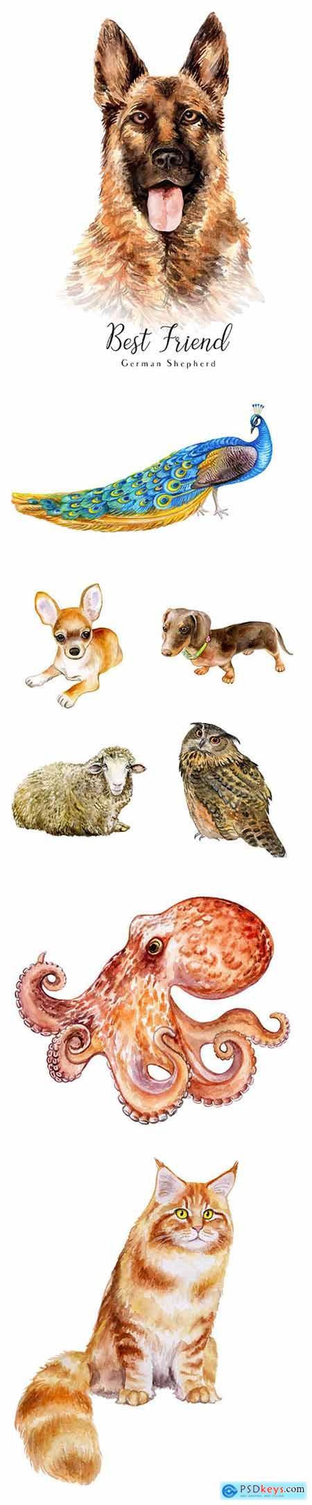 Vector Set - Watercolor Printing Animals Vol 9