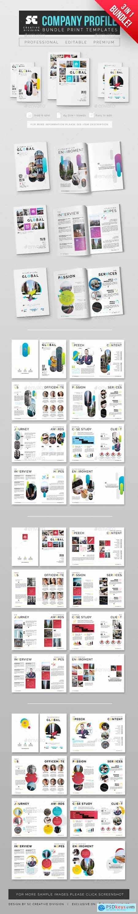 Company Profile Bundle 3 In 1 24776320