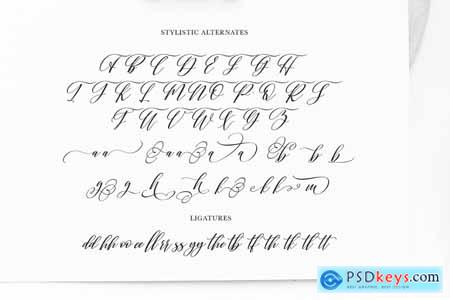 Shington Script 4191327