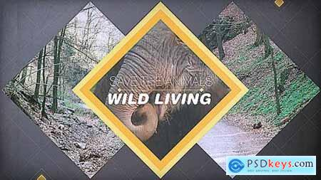 Videohive Wild Living 11565224