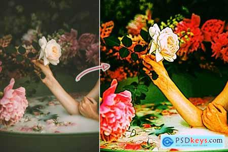 Rosy Oil Paint Lite Action 4141999