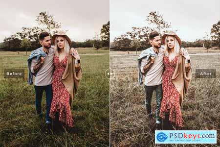 Farmhouse Mobile & Desktop Lightroom Presets