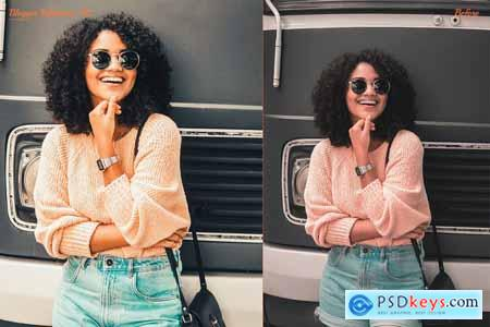 Blogger Influencer Preset Collection 4168574