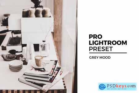 Grey Mood Lightroom Preset