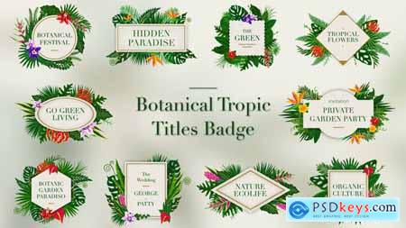 VideoHive Tropical Titles Badge 23389450