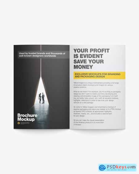 Matte Brochure Mockup 50474