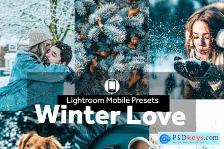 Lightroom Mobile Presets Winter Love 4190318