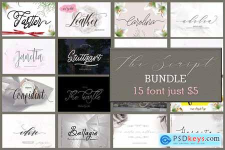 The Script Bundle 4242596
