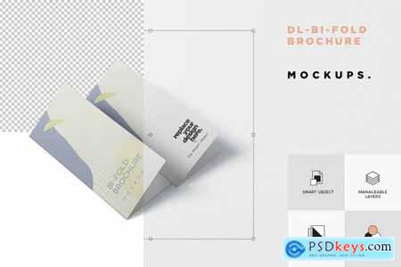 DL Bi-Fold Brochure Mock-Up Set