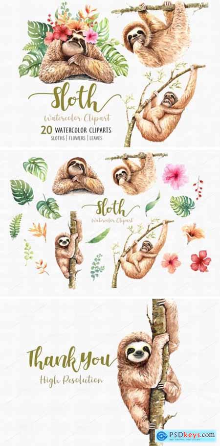 Sloth. Animals Watercolor Clip Art 1949440